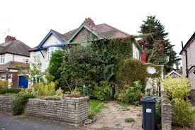 mans house hidden behind massively overgrown garden mirror online