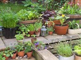 Budget Garden Ideas Potted Small Garden On A Budget Small Garden Ideas On A Budget