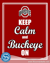 Ohio State Outdoor Rug 489 Best Ohio State Buckeyes Images On Pinterest Ohio State