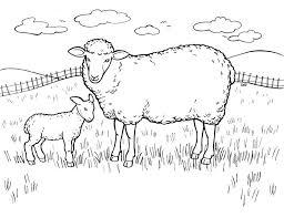 cute sheep color lost sheep coloring sheep coloring