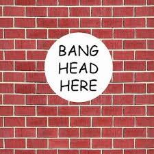 Brick Wall Meme - sue dymond says ignorant assumptions around down syndrome
