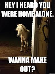 Making Out Meme - hey i heard you were home alone wanna make out neighborhood