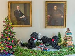 White House Christmas Decorations 2013 by White House Christmas First Dog Bo White House Christmas 2014