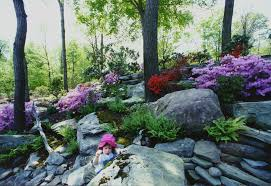 charming rock garden design with colorful flowers and pine trees
