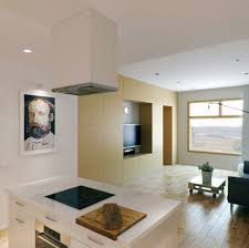 prepossessing small kitchen living room combo deco introduces