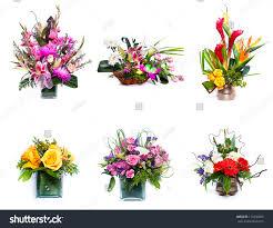 selection flower arrangement stock photo 116336899 shutterstock