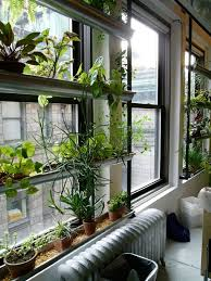 indoor window garden planttherapy look the green screen at the ny horticultural society