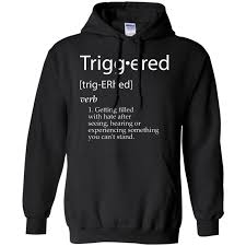 Meme Definitions - triggered definition funny meme definitions gift pullover hoodie