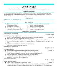 Resume Summary Statement Example by Good Resume Summary