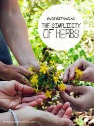 herbal starter kit by herbal academy herbalism pinterest