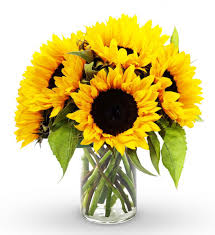 sunflower bouquets sunflower bouquet to brighten your day