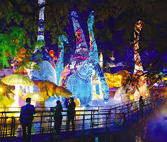 zoo lights houston prices amazing christmas lights houston neighborhoods tx zoo 2015 race