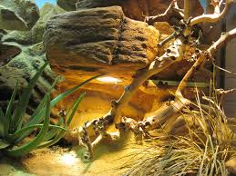 make a fake rock cave basking spot for a reptile cage 10 steps