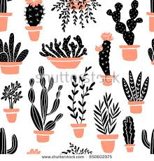 Succulent And Cacti Pictures Gallery Garden Design Succulents Cacti Plants Vector Seamless Pattern Stock Vector
