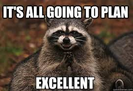 Evil Meme - it s all going to plan excellent evil racoon quickmeme