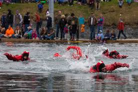 Alaska wild swimming images Bees races and wild orchids springtime in kodiak alaska jpg