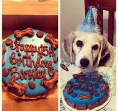 birthday cakes for dogs the barkery gourmet dog bakery dog treats grooming more