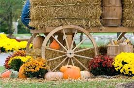 outdoor thanksgiving decorations hunde foren