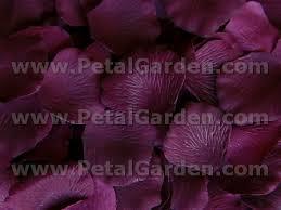 silk petals petal garden silk petals plum