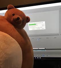 Meme Teddy Bear - teddy bear with small head meme binge thinking