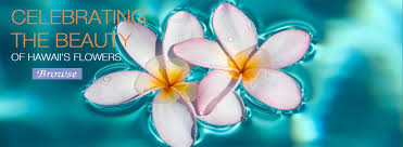 Hawaiian Flowers And Plants - fresh tropical flowers hawaiian flowers gifts and leis