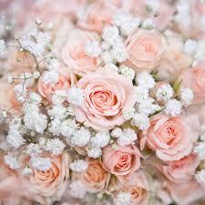 bouquet de fleurs roses blanches de mariée rose doux avec rosier et petite fleur blanche u2014 photo