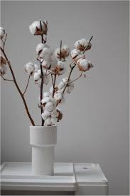 cotton flowers new trend alert dried flowers home decor singapore
