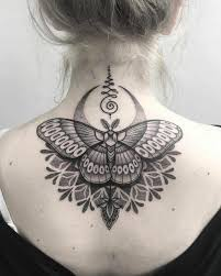 butterfly symbolism meaning and models hum ideas