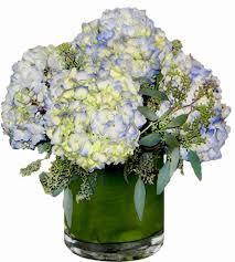 blue hydrangea flower arrangement georgewood florist