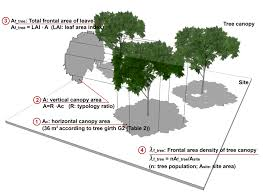 calculation schematic of effective frontal area density of tree
