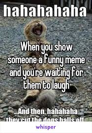 Waiting Meme - you show someone a funny meme and you re waiting for them to laugh