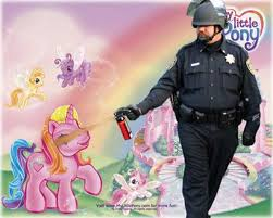 Mlp Meme Generator - what is up with the my little pony fad