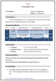 professional curriculum vitae resume template example of great