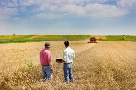 conseiller agricole chambre d agriculture conseiller agricole salaire études rôle compétences regionsjob
