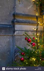 a real christmas tree in front of a stone wall in a street in