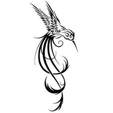 image gallery hummingbird tattoo outline designs