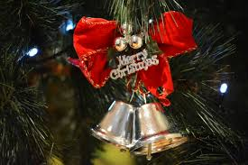 free images flower holiday decor christmas tree ornament