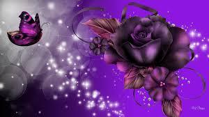 delightful purples bright butterfly roses hd wallpaper 1580798