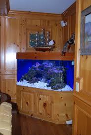 Beautiful Home Fish Tanks by 686 Best Aquarium Ideas And Design Images On Pinterest Aquarium