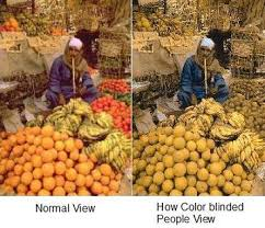 Human Color Blindness Color Deficiency What Causes Color Blind Consequences And Treatment
