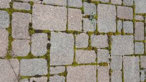 Patio Paver Jointing Sand by Weeds In Brick Paver Patio Joints Il Stone U0026 Brick Pavers