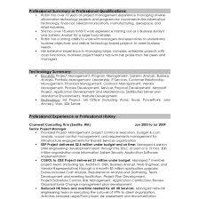 professional summary resume exles professional summary resume exles within for professionals