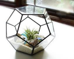 terrarium glass pyramid planter with air plant diy kit desk