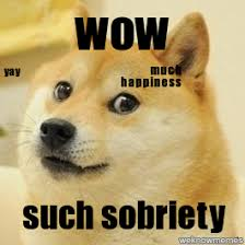 Yay Meme - doge much happiness yay wow such sobriety weknowmemes