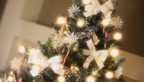 advent activities go see a christmas light display stl catholic