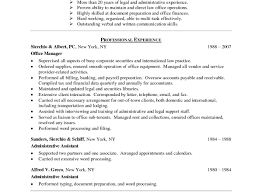 ideal resume format of resumes best resumes format 11 finance resume template