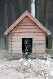 cool dog houses how to keep a dog house cool in summer daily puppy