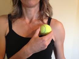 orthopedic u0026 pelvic health physical therapy and restorative