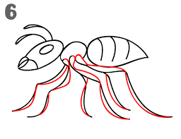 how to draw an ant step by step