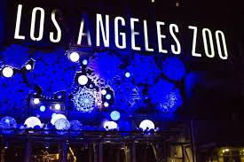 la zoo lights pays tribute to city u0027s history animal conservation